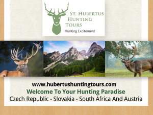 Hubertus Hunting Tours